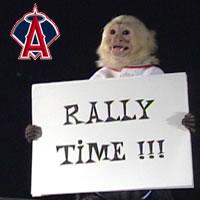 rally_monkey.jpg